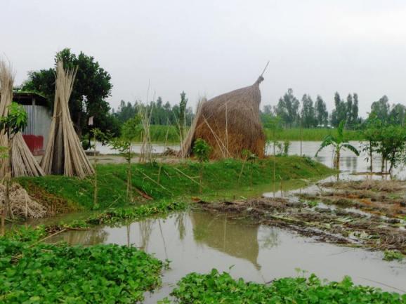 Foto: Subir Kumar Saha, CDD