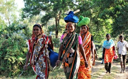 tea-garden-workers